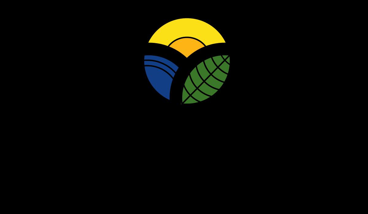 Ndlovu de Villiers attorneys logo